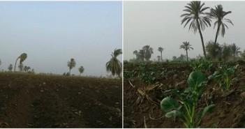 المنيا 500 فدان مهدده بالبوار بقرية «الروضة».. والأهالي: «فينك يا وزير الري»(صور)