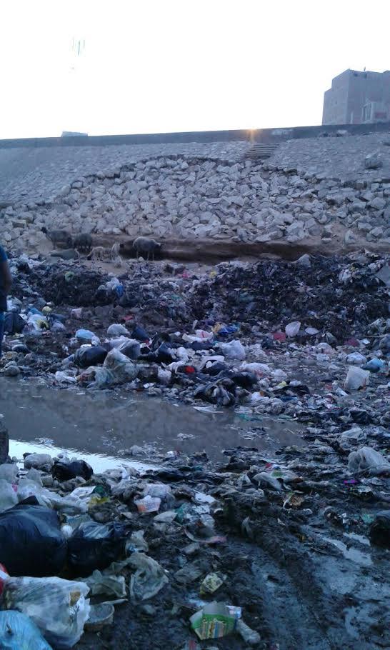 تكسير وتجريف حجارة الدائري «نزلة ناهيا» بسبب جامعي القمامة (صور)