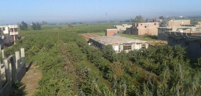 استياء بين سكان في رشيد من مزرعة دواجن داخل الكتلة السكنية (صور)