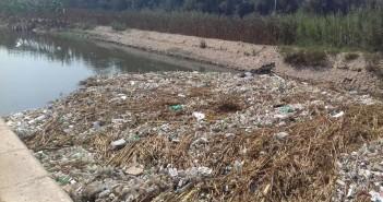 أهالي «كفر ربيع» يجددون شكواهم من انتشار القمامة بترعة القرية: تخدم 70 ألف مواطن (صور)