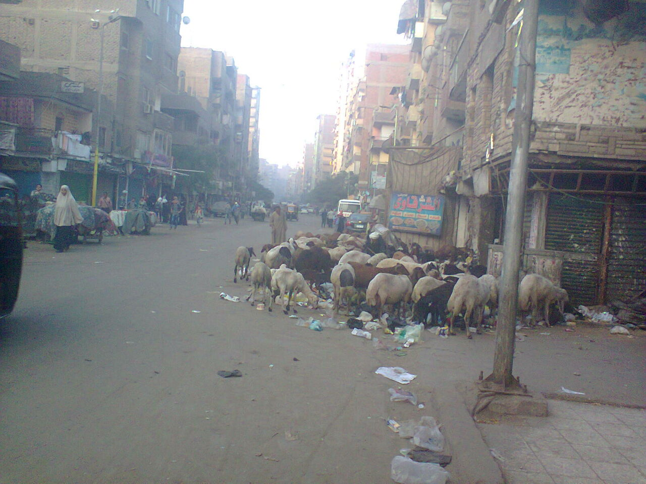 الجيزة| انتشار تجمعات القمامة بشارع مستشفى الصدر بالعمرانية (صور)