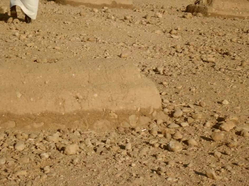 سكان «أولاد يحيى» يطالبون برفع القمامة المتراكمة أمام مقابر القرية (صور)