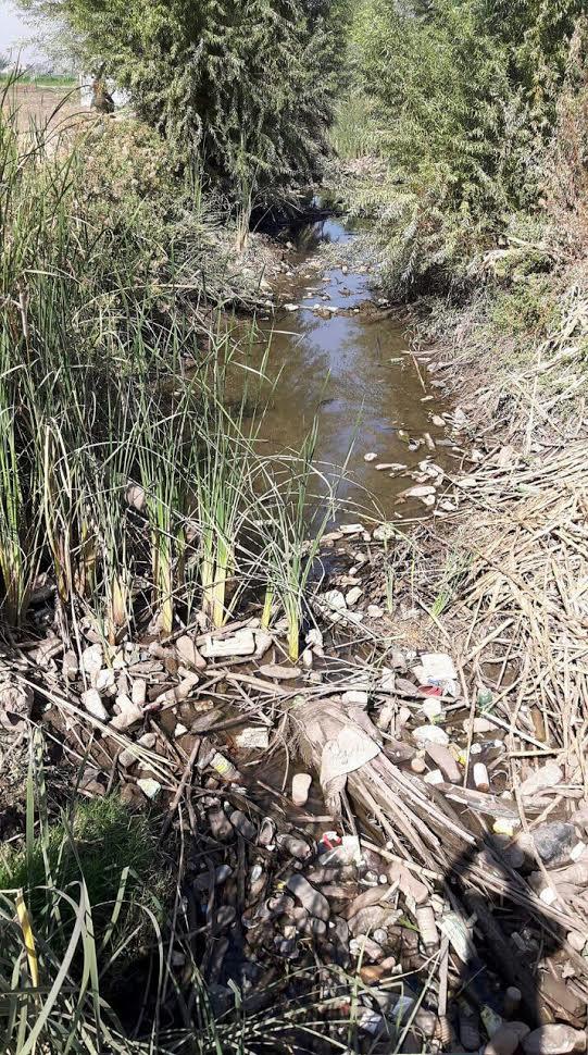 أهالي قري «العسيرات» يشكون نقص مياه الترعة: الأراضي مهددة بالبوار (صور)