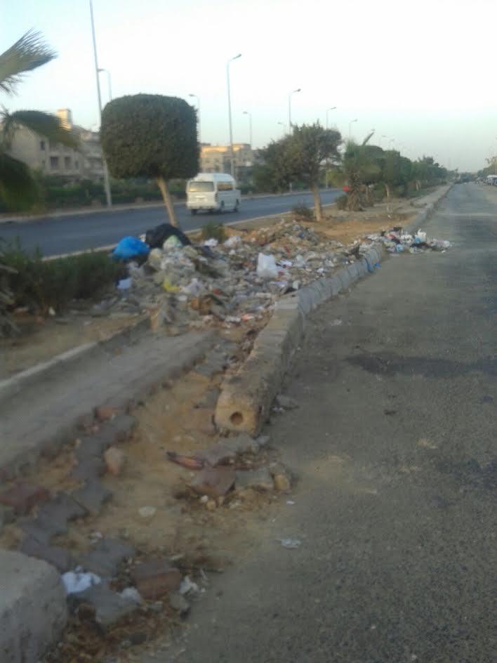 سكان «التجمع الأول» يشكون اهمال جهاز المدينة للطرق وانتشار القمامة بها(صور)