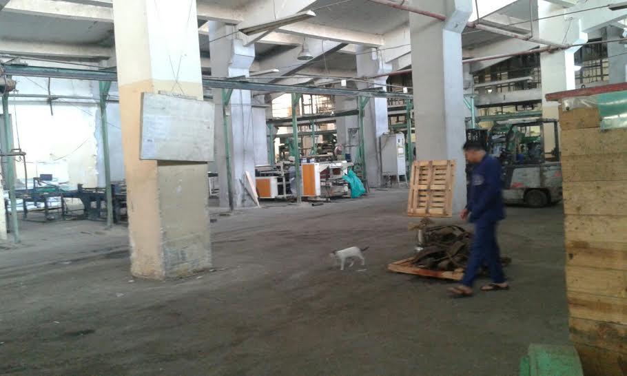 مطالب بتدخل الحكومة لإعادة العمل بمصانع الدلتا للأسمدة المتوقفة منذ أسابيع (صور)