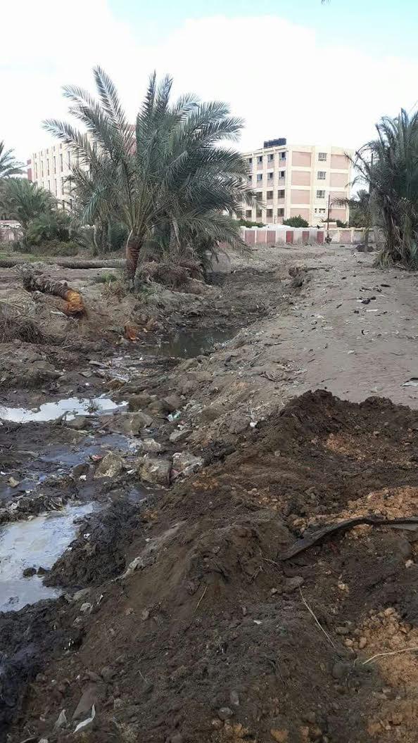 كفر الشيخ |مطالب بتغطية ترعة «الجزيرة الخضراء» لقربها من مجمع مدارس (صور)