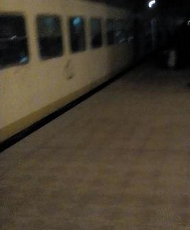 أهالي «بيلا» يطالبون بزيادة عدد عربات القطارات المتجهة إلى كفر الشيخ لتقليل الزحام (صور)