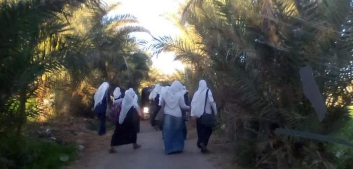 كفر الشيخ| مطالب بتغطية ترعة «الجزيرة الخضراء» لقربها من مدارس (صور)