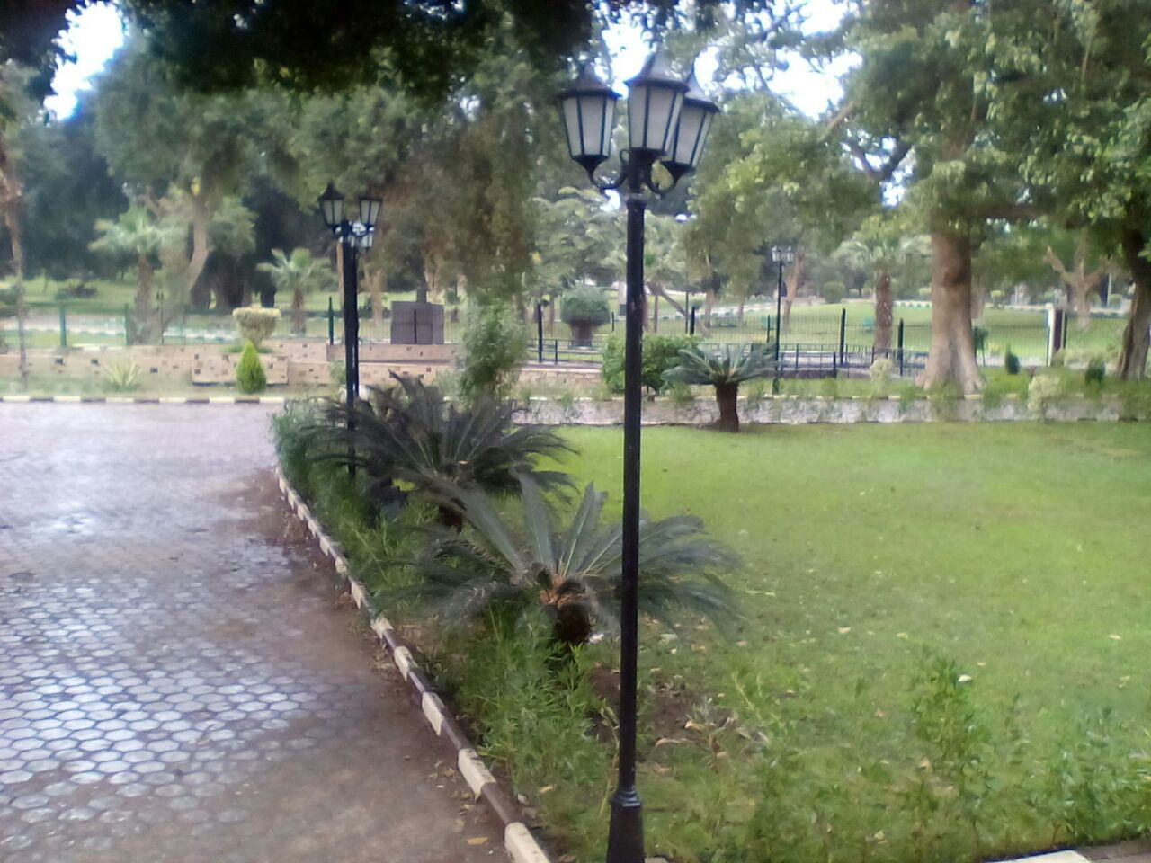 ودي فرحة بنت اسمها «جنة» بالمطر.. الأجواء في القناطر الخيرية بعد سقوط الأمطار