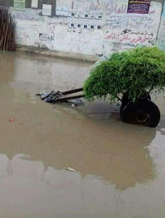 البحيرة.. عودة المراكب لشوارع مدينة إدكو بعد غرقها في مياه الأمطار (صور)
