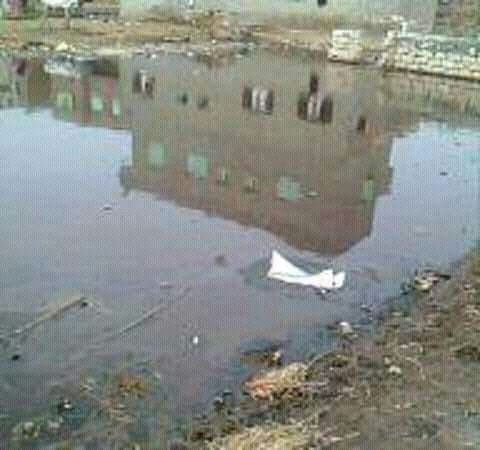 «العقايدة» في كفر الشيخ تعاني من الصرف الصحي