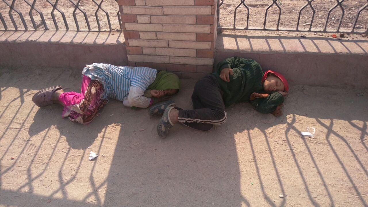 الرصيف لحاف من برد الشتاء.. أطفال بلا مأوى أمام جامعة الزقازيق (صور)