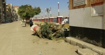 مجلس مدينة «المراغة» يقطع أشجار الكورنيش التاريخية (صور)