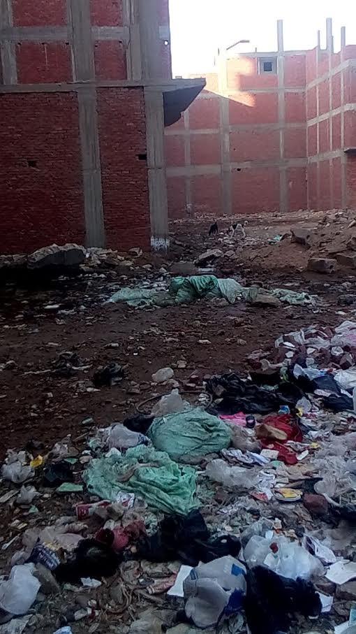 أهالي «حوض صبيح» يطالبون محافظ القليوبية بإدخال الصرف الصحي للقرية (صور)