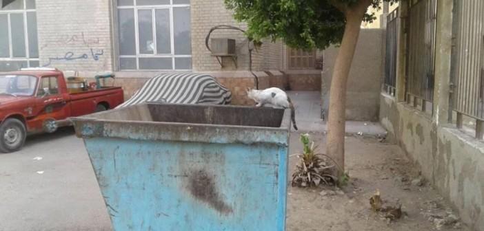 مواطن يشكو تردي الخدمات الصحية بمستشفى «أخميم» بسوهاج (صور)