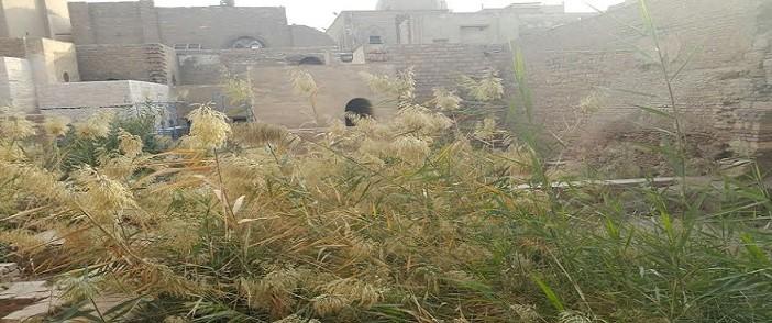الإهمال يحاصر «بيت السحيمي».. قمامة وحجارة وحشائش في غياب «الآثار» (صور)