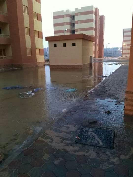 صور | استياء سكان في مشروع «النرجس» بمدينة بدر من مستوى التشطيب
