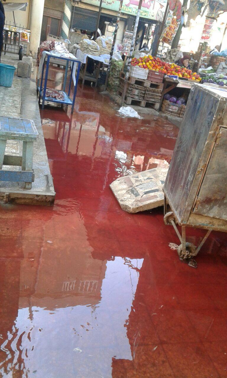 دماء وصرف صحي تغرق منطقة عمارات الأوقاف في سوق بنها للخضار (صورة)