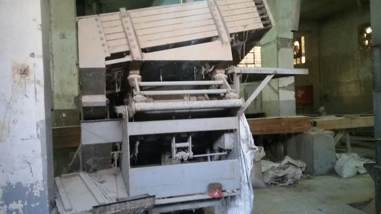 وقفة لعمال «المضارب العربية» بالغربية: الأرز أمن قومي.. وردنا طنًا واحدًا هذا العام