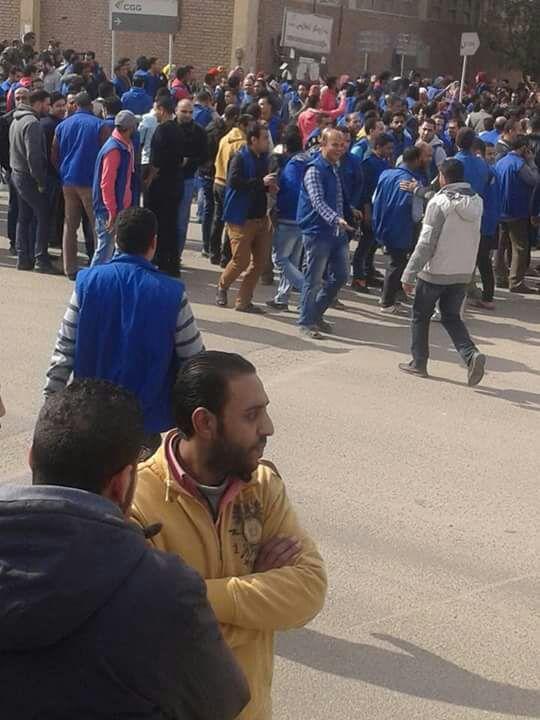 بالصور.. آلاف من عمال «يوني» الألمانية بالمنطقة الحرة يحتجون ضد تدني رواتبهم