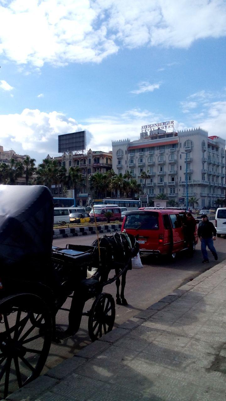 شط إسكندرية وحي محرم بك في ساعة روقان (صور)