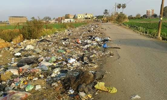 أهالي «دماص» بالدقهلية يشكون انتشار القمامة بشوارع القرية (صورة)