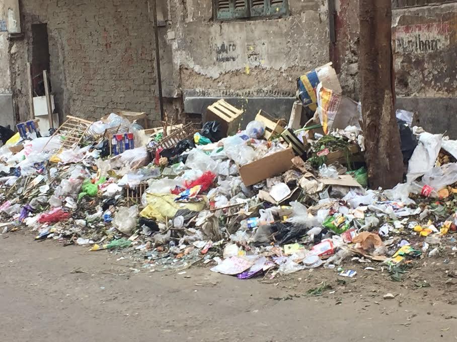استياء من انتشار القمامة بشوارع «الدقي» بمحافظة الجيزة (صور)