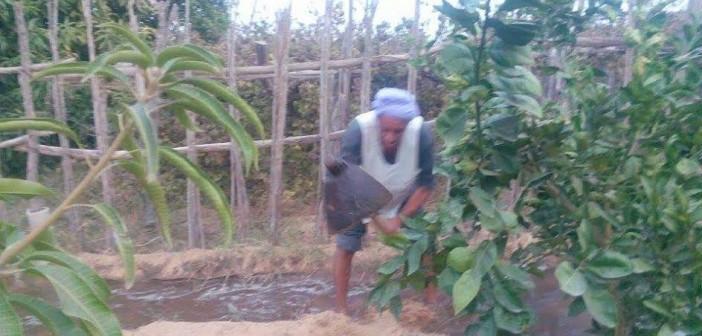 مطالب بتعميم الكارت الذكي للعاملين بالزراعة دون قصرها على أصحاب الحيازات