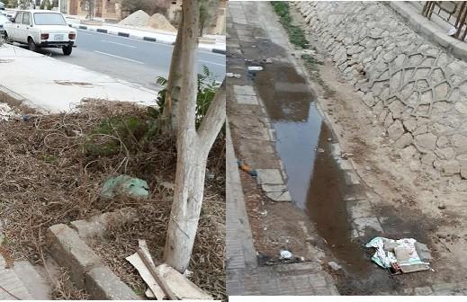 سكان «الحي المتميز» بالشروق يشكون تفاقم أزمة الصرف والقمامة (صور)
