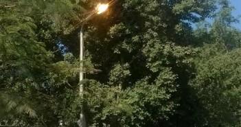من كتر الكهرباء.. إضاءة أعمدة الإنارة بحدائق الزيتون نهاراً (صورة)
