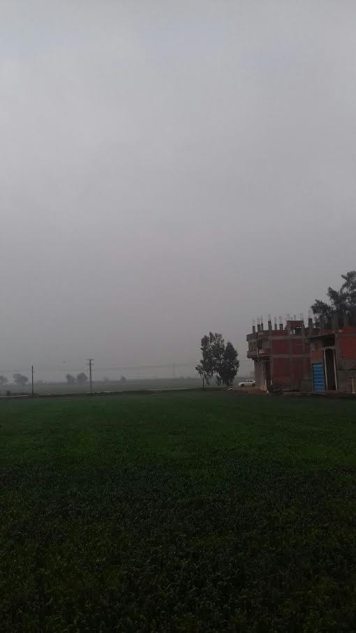 سقوط أمطار خفيفة على محافظة كفر الشيخ (صور)