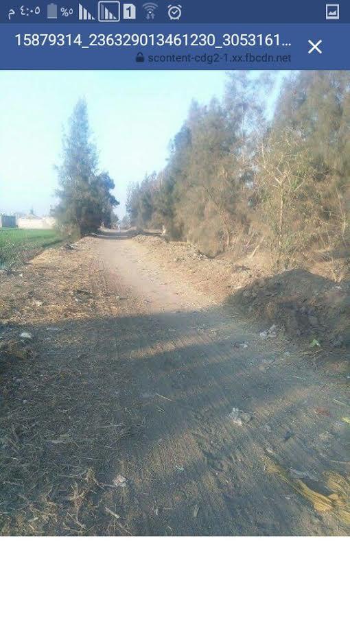 أهالي «زور أبوالليل» يطالبون محافظ الشرقية برصف الطريق الرئيسي للقرية (صور)