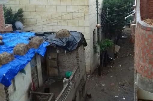 سقوط أمطار خفيفة على كفر الشيخ (صور)