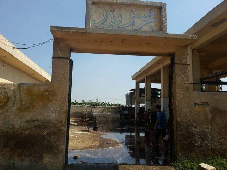 بالصور.. تفاقم أزمة الصرف الصحي في مجزر مركز بدر بالبحيرة