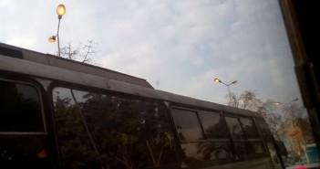 أعمدة الإنارة بكورنيش «روض الفرج» مضاءة في عز النهار (صورة)