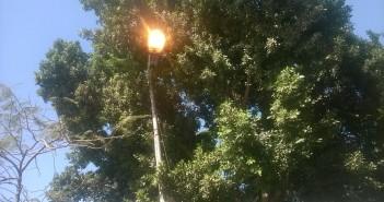 في وقت النهار.. أعمدة إنارة مُضاءة في شارع قرب حي الزيتون