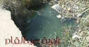 مطالب بإصلاح طريق «زاوية عبد القادر» بالإسكندرية: به حفرتين عميقتين (صورة)