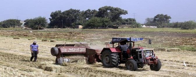 ملاك الأراضي المستصلحة بالمنيا يطالبون بخفض قيمة الفدان (صورة)