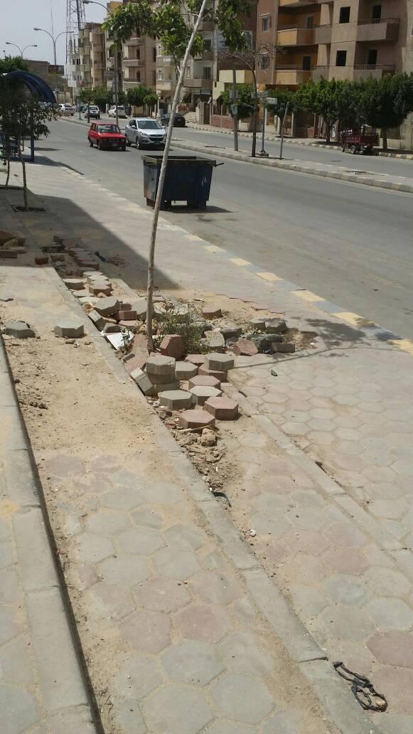 بالصور.. سكان في «العبور» يطالبون بحظر الورش المهنية والباعة الجائلين