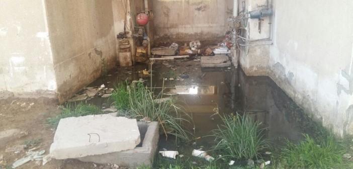 أهالي «أم عزام» بالإسماعيلية يطالبون بإصلاح شبكة الصرف الصحي (صور)