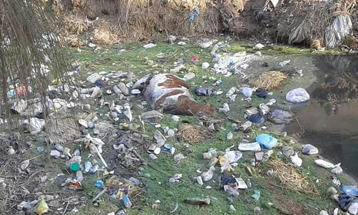 أهالي «لاصيفر البلد» بكفر الشيخ يطالبون بردم مصرف للصرف الصحي