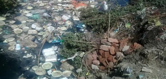 أهالي «الحومة» يطالبون بتطهير ترعة القرية (صور)