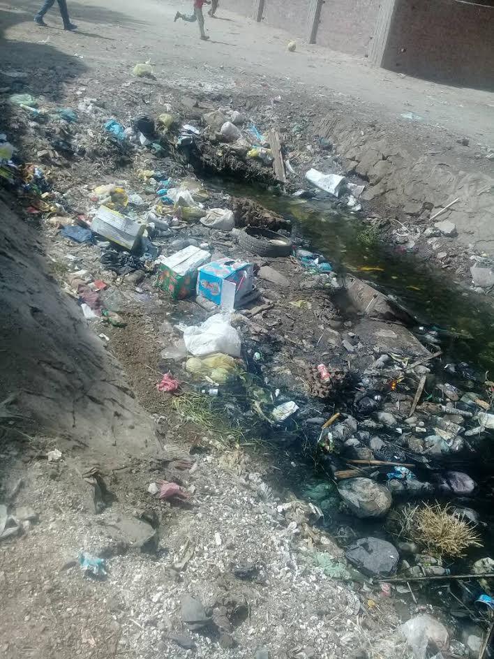 أهالي «الحومة» يطالبون بتطهير ترعة القرية بعد انسدادها (صور)