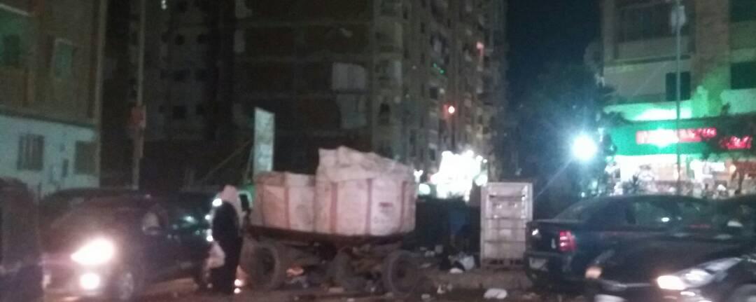سكان في حلمية الزيتون يشكون من نبش القمامة.. وانتشار الكلاب الضالة