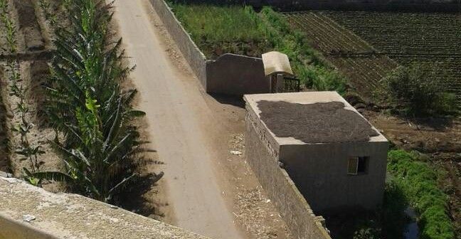▶️ بالفيديو.. مطالب بإنارة طريق رابط بين عزبتين في البحيرة