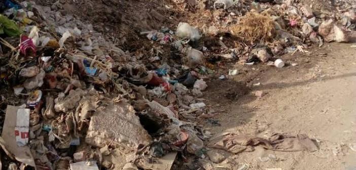 صور.. تفاقم أزمة القمامة في نطاق قسم بحري بالزقازيق