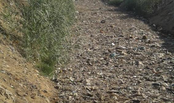 صور.. أهالي «كفور الرمل» يشكون إلقاء مصانع المنطقة الصناعية المخلفات في مصرف القرية