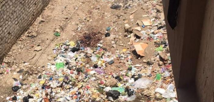 سكان في طوخ القليوبية يشكون انتشار القمامة بالشوارع (صور)