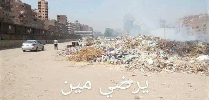 تفاقم أزمة القمامة بـ«المرج».. ومواطنة: سيارات حكومية ترمي المخلفات بالشوارع (صور وفيديو)
