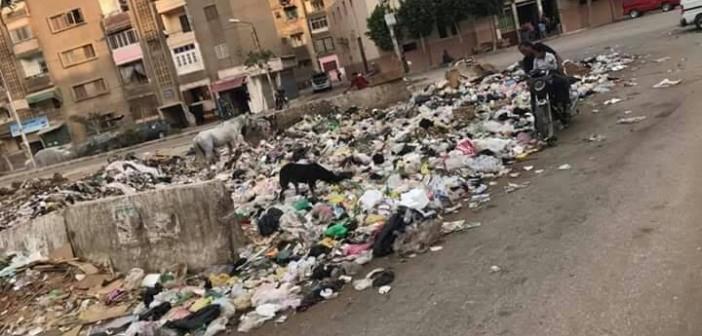 أزمة قمامة في منطقة «المنشية» ببنها (صورة)